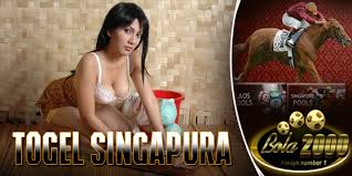 main togel singapura